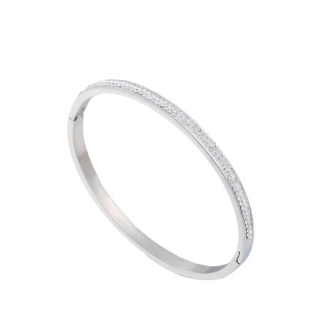 ARMBAND STAINLESS STEEL Kleur Silver