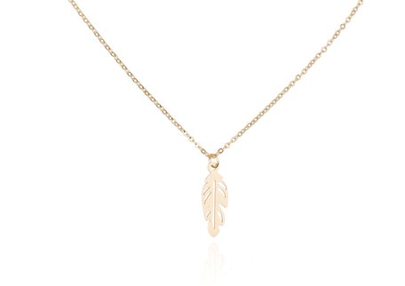 Stainless Steel Ketting Met VEER/FEATHER