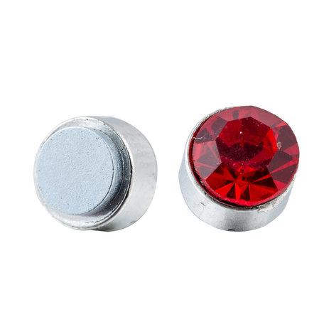 Roestvrij Staal Magnetische Oorbel 7mm