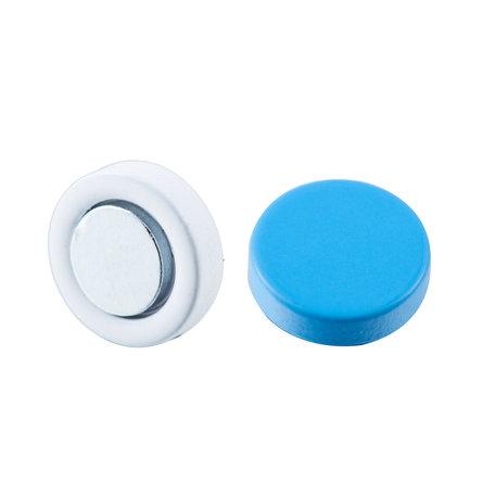 Roest Vrij Staal Magnetische Oorbel 10mm