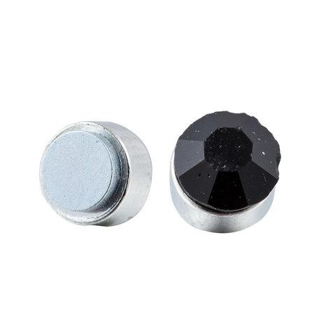 Roest Vrij Staal Magnetische Oorbel 4mm