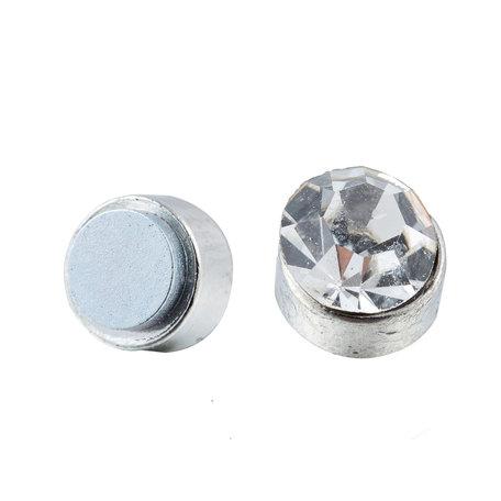 Roest Vrij Staal Magnetische Oorbel 5mm