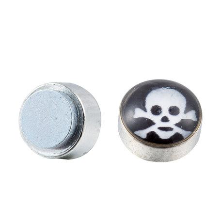 Roest Vrij Staal Magnetische Oorbel 6mm