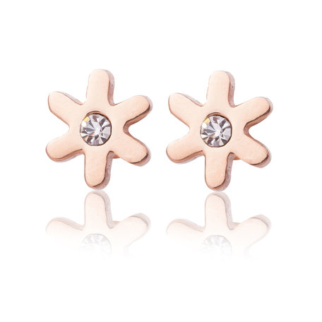 Ear Studs Stainless Steel Color Rose Gold