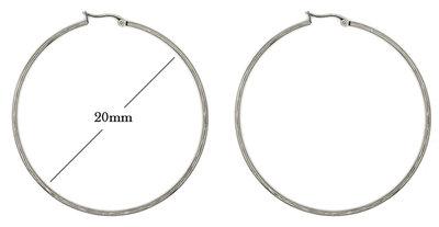 Statement Oorbellen - Stainless Steel Hoop Earrings - Zilver - Dia: 20mm